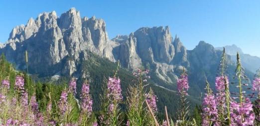 1° Maggio in montagna: lo spettacolo della primavera