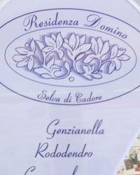Residenza Domino a Selva di Cadore